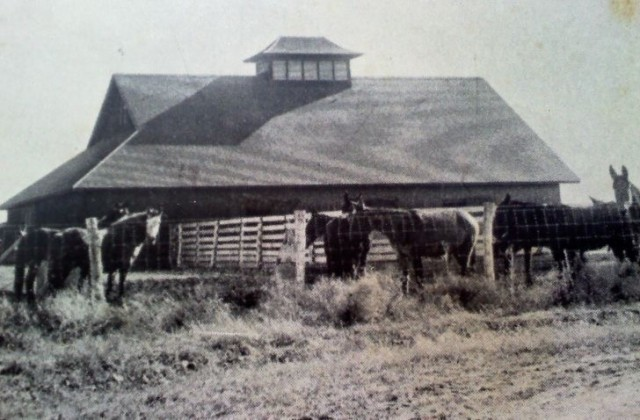 The Anderson Family Farm